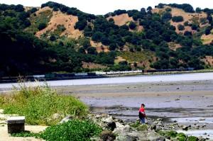 Martinez Shoreline